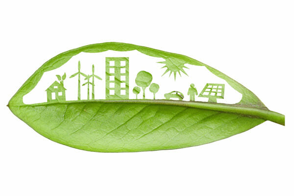 The Difference Between Green Furniture and Sustainable Furniture